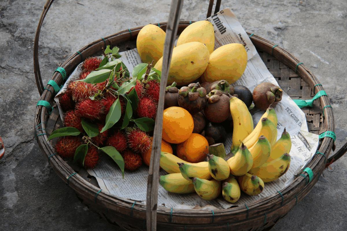 aprender a conservar las frutas
